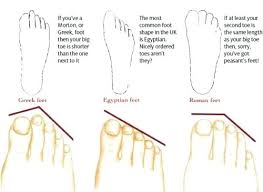 Ancestry Diagram Toe Length Ancestry Chart House Locations Clicktips Info