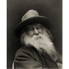 literary analysis of walt whitman poems i hear america singing through the windows through doors burst like a ruthless force into the solemn church and scatter the congregation into the school where the scholar is