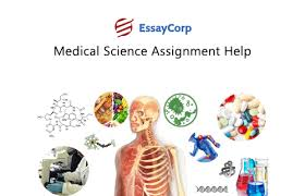 medical science assignment help online medical science homework help