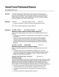 Resume Skills Summary Good Summary For Resume Resumees Templates Statements Career 19
