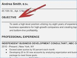 Does A Resume Need An Objective Do You Need An Objective On A Resume globishme 19