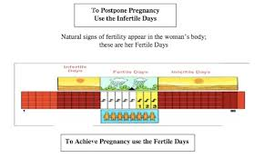 Lifeissues Net The Practice Of Natural Family Planning
