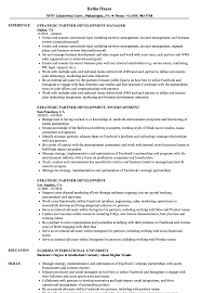 Strategic Partner Development Resume Samples | Velvet Jobs