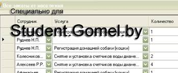 Заказать курсовую работу в Гомеле Курсовая на заказ Автоматизированная система работы с обращениями граждан
