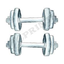 Gym Exercise Planner Workout Gym Exercise Planner Clipart Dumbell Weights Clipart