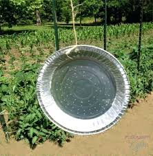 how to keep deer out of my vegetable garden girl 7 easy ways to keep deer and other animals out of deer proof vegetable garden ideas