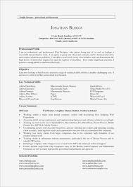 Profiles On Resumes What Is A Professional Profile On Resume New Inspirational Key