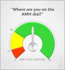 Where Are You On The Amh Anti Mullerian Hormone Dial