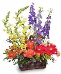 summer s end basket of flowers