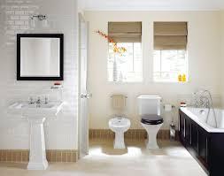 Bathroom Toilet And Bath Design Best Colour Combination For