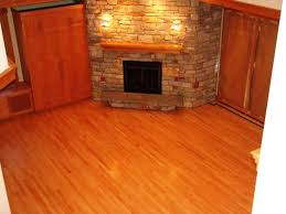 best flooring for pets. Bamboo Flooring Pets Novicme Best For . R