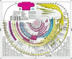 Details About Amazing Bible Timeline With World History A Fun Engaging Bible Study God Jesus