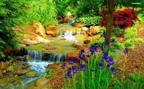 Small Picture 46 Garden Wallpapers HD Garden Wallpapers and Photos View High