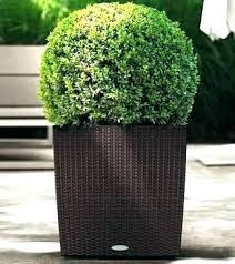 extra large outdoor planters for uk resin pots patio and garden