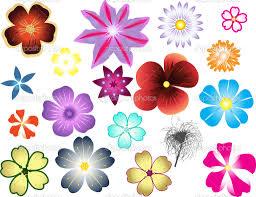 10 types of black flowers free hd wallpapers hdflowerwallpaper
