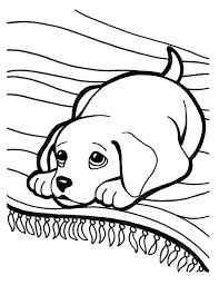dogs coloring pages puppy coloring pages for free free printable puppy coloring pages new coloring pages