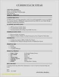 resume template mit lebenslauf mit foto cv resume example doc valid resume template doc