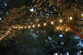 Backyard Christmas Lights » Photo Gallery BackyardChristmas Lights In Backyard