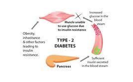Wanneer laat je je op diabetes testen?