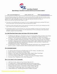 Real Estate Consultant Resume | Resume Template