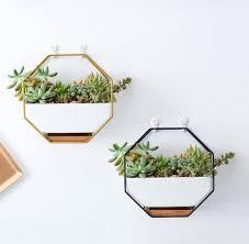 plant pots baskets window boxes