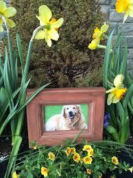 frames picture cemetery waterproof