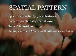 Spatial Organizational Pattern Awesome Organizational Patterns By Emily D