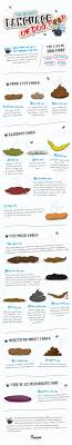 Know Your Dog Better With Our Healthy Dog Poop Chart