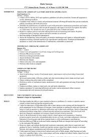Mechanic Assistant Resume Samples Velvet Jobs