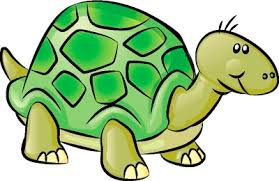 Small Picture Turtle Drawings For Kids mdha