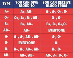 Blood Type Rarity Chart Blood Types Coolguides