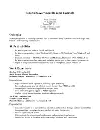 Homey Objective For Resume Government Position Exquisite Example