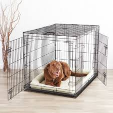 big dog furniture. Charming Kennels Dog Crates 2018 Dogs Recommend Big Log Furniture Used B