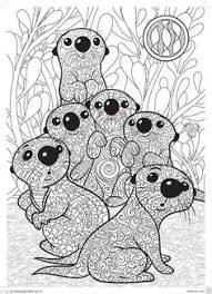 Small Picture An Otter from ANIMALS An Adult Coloring Book Adult Colouring