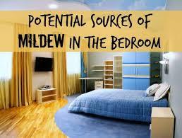 Mildew In Bedroom
