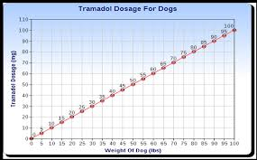 Tramadol For Dogs Usage Dosage Side Effects