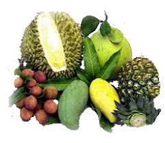 tropical fruit names.  Fruit Listoffruits Inside Tropical Fruit Names M