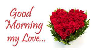 Beautiful 456+ Good Morning Flower ...