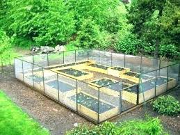 planning vegetable garden layout raised bed a