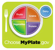 Healthy Eating Resources: What is a Healthy Plate? - Thriving Schools | A  partnership for healthy students, staff & teachers