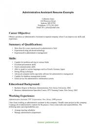 Excellent Construction Project Assistant Executive Assistant Resume