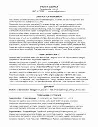 Project Manager Resume Examples Fresh It Project Manager Resume