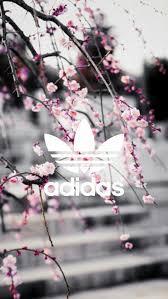 screen background image handy living: imagem de adidas wallpaper and pink
