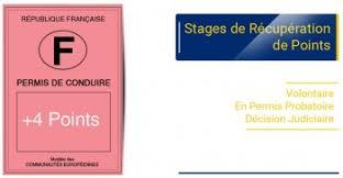 Permis.com Stages de récupération de points