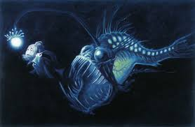 Finding Nemo Light Fish Le Monde De Nemo The Art Of Disney Concept Art Disney