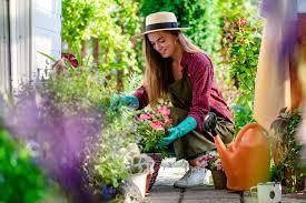 mini home garden for a healthier mind