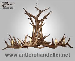 xl antler chandeliers antler chandelier regarding attractive house antler chandelier for prepare