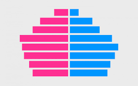 Pyramid Chart Excel Population Pyramid Chart In Excel Radu Popa