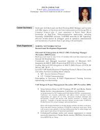 Resume Career Summary Examples For Resume
