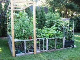vegetable garden fence en wire photo 14